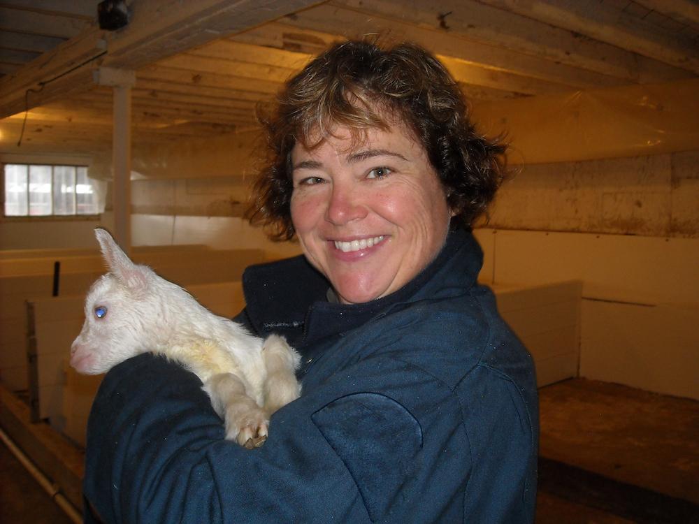 Nancy Wheelton