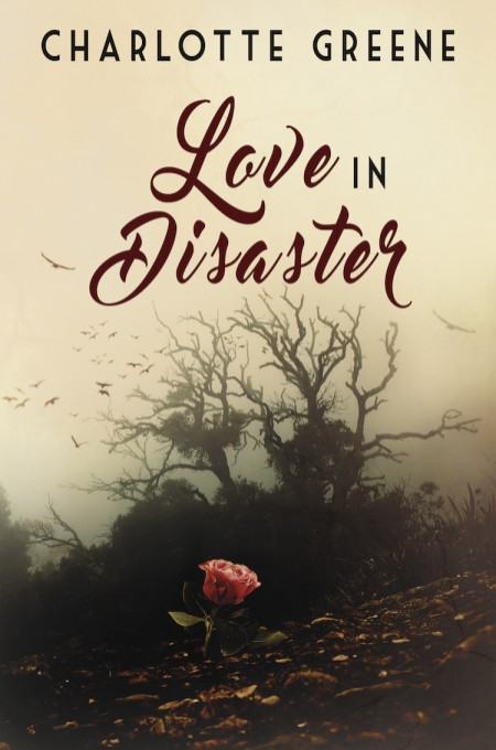 Love in Disaster