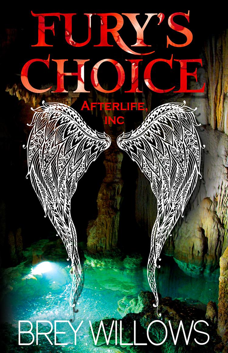 Fury's Choice